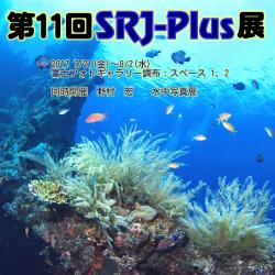 11th SRJ-Plus