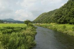 07_nakahara.jpg