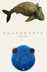 COACERVATE -躯幹と種子- 日比野猛展 (やさしい予感 2010/7/14~7/19)