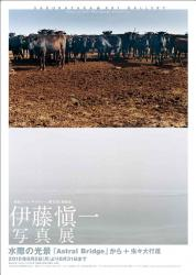 伊藤愼一写真展 水際の光景 「Astral Bridge」から+虫々大行進 (桜坂アート・ギャラリー 2010/8/2~8/31)