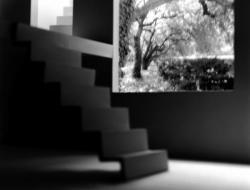 寺田真由美 「LIVING ABSENCE 」 (Gallery OUT of PLACE 2010/9/18-10/17)