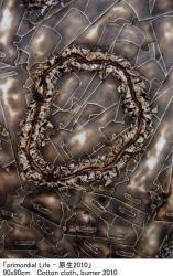 primordial Life-原生2010 (galleryQ 2010/10/11-10/16)