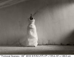 +PLUS Tokyo Contemporary Art Fair (YOKOI FINE ART 2010/11/19-11/21)