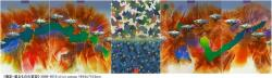 加納 光於 《鳥影-遮るものの変容》 (ギャルリー東京ユマニテ 2010/12/6-12/25)-1