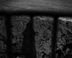 林田摂子・福山えみ「森をさがす 月がついてくる」展 (TOTEM POLE PHOTO GALLERY)-福山えみ