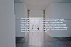 「joanna (chapter one)」 展示風景画像 ヴエネツィア・ビエンナーレ第12回国際建築展 2010年 撮影: Dean Kaufman