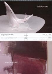 プリュス・ジ・アートフェア 2011 (2011/11/18-11/20)