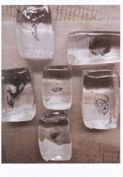 尾形かなみ ガラス展 「わたしの耳は貝の殻」 (温々 2011/11/22-12/4)