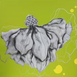 「Untitled-G09005」   2009   Acrylic on canvas  80x80cm ©Ha Sang-Rim