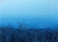 2013/1/26-2/16 TakaIshiiGalleryphotographyFilm