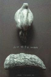 山口明子展 「Nの海馬」