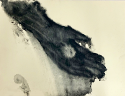 作品タイトル/掌の宝 素材/鳥の子紙、インク 技法/モノタイプ版 制作年/2019年
