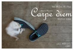 サトウミキ個展「Carpe diem カルペ・ディエム」DM写真