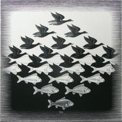 空と水 I(Sky and Water I) All M.C. Escher works © the M.C. Escher Holdings B.V. – Baarn – the Netherlands