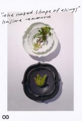 "hajime tamura's solo exhibition ""the naked shape of things"""