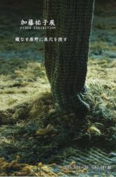 加藤祐子展 FIBER EXHIBITION 織りなす原野に巣穴を捜す