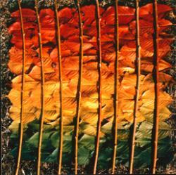 ニルス・ウド 「収穫より 桜の葉、柳の枝」