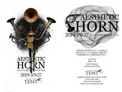 Aesthetic Horn