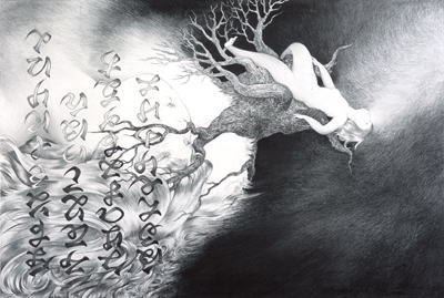 個展なび | 全国の展覧会情報のポータルサイト近藤聡乃展 「KiyaKiya 1/15秒」