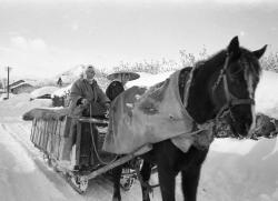 雪道を進む馬そり(昭和32年1月頃)弘前市