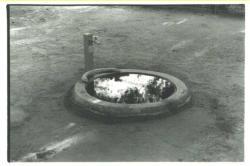 内野ゆきな写真展 「見上げると水面は凪いでいる」