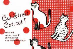 'Cat Street Cat,cat! '