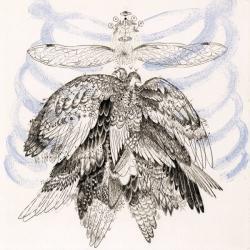 ©大小島真木「始祖鳥」 / エッチング、スピットバイト、ソフトグランドエッチング、凸版 3版3色