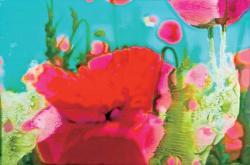 Sarah Fujiwara Exhibition  Melting Petals