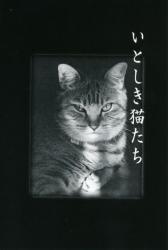 吉祥寺ねこ祭り2013 いとしき猫たち 風間眞由美展(アートギャラリー絵の具箱)