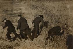 撮影者不詳《イルフ逃亡》 1939年 個人蔵