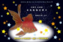 goldfishmeteor2_a.jpg