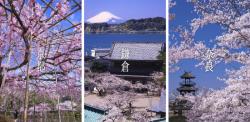harada_kokuchi.png
