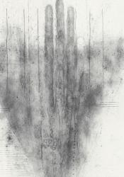 川島清 「凹のうち(4) 長い指」2013 鉛筆、鉛粉、紙 79.0×56.0cm (部分)