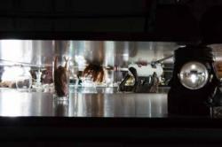 徳重道朗 《H123》(部分)2016年 展示風景:「新ナゴヤ島」名古屋市民ギャラリー矢田、2016年