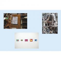 各作家作品  左上:萩原葉子(写真)、右上:こばやしゆうさく(インスタレーション)、下:大矢 享(絵画)