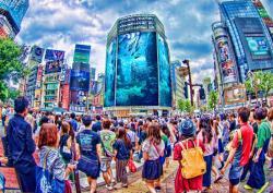TOKYO WATER VIEW Ⅰ (SHIGERU SAKATA)