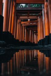 © Yasuhito  Shimizu