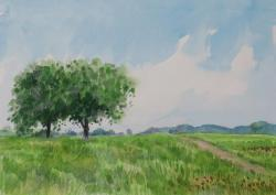 入江観「草原の樹」