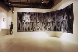 加賀城 健 《Discharge―かみなりおこし》別珍、ハイドロサルファイト 184.0 x 500.0 cm 2007 年