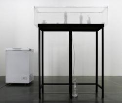 God of the Day, 2015, Ice, plastic bottle, tank, plastic tube, steel frame, freezer, Dimensions variable