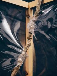 私と世界を隔つもののための習作、2021年  素材提供:HUMOFIT by 三井化学株式会社  Photo by Ichiro Mishima