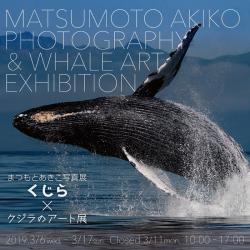 matsumoto_in.png