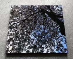 Mizukagami 「 写影 - 31.03.15 」 60 × 60 × 3.5 cm
