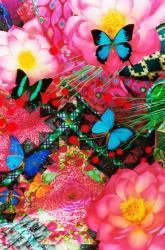 (C)mika ninagawa Courtesy of Tomio Koyama Gallery