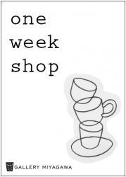 oneweekshop2.jpg