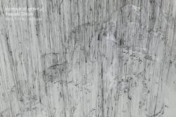 大西康明 『重力の輪郭 contour of gravity』