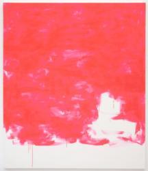 Gardar Eide Einarsson Fluorescent Pink III (2012) © Gardar Eide Einarsson Courtesy of the artist