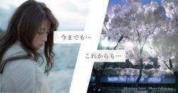 sakai_dm_small.jpg