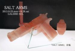 SALT ARMS -ヒグラシ ユウイチ展- (Galerie SOL)