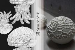 shinsyokuten.jpg